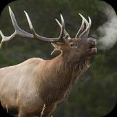 Elk Sounds Lite icon