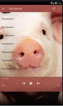 Pig Sounds Lite apk screenshot