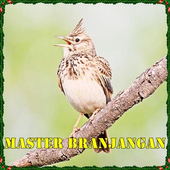 Masteran Suara Branjangan Mp3 icon