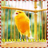Kicau Master Kenari Lokal Gacor icon
