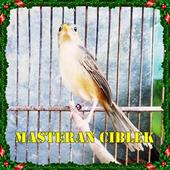 Kicau Masteran Ciblek 2018 icon
