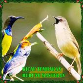 Kicau Tembakan Burung Masteran icon