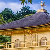 golden temple live wallpaper icon
