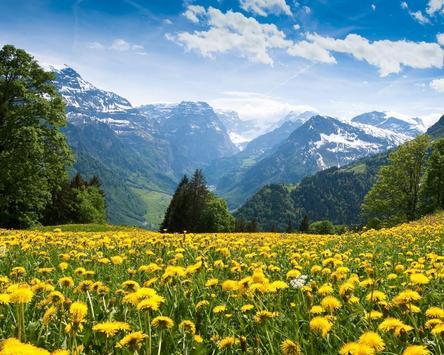 Landscape Nature Holiday Jigsaw Puzzles apk screenshot