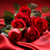 Roses Jigsaw Puzzles icon