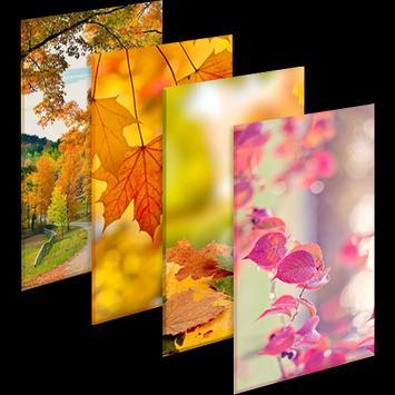Autumn New Wallpaper|Beautiful 4K Background screenshot 6