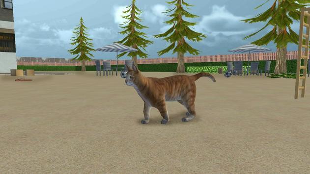 Cat Simulator 2017 apk screenshot