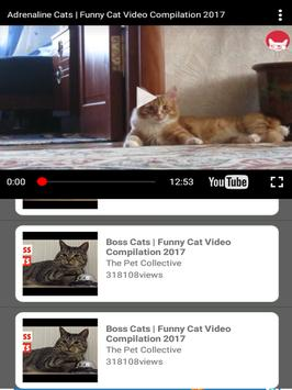 Best of Funny Videos & Comedy Clips apk screenshot