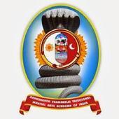 Aadhisakthi Varmakalai icon