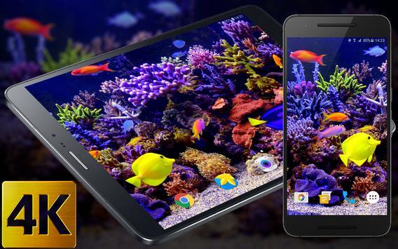 Aquarium Video Live Wallpaper poster