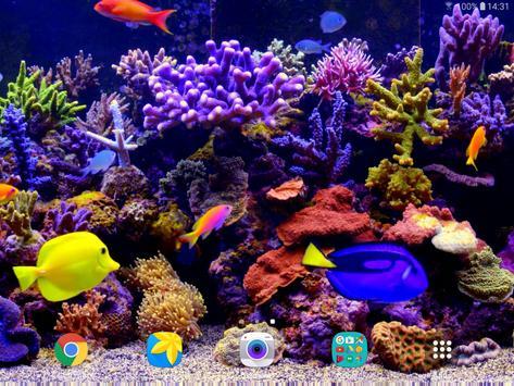 Aquarium Video Live Wallpaper screenshot 12