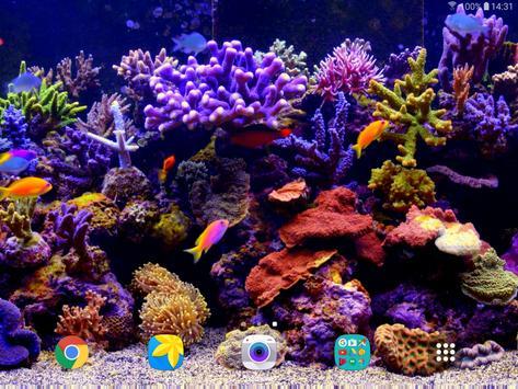 Aquarium Video Live Wallpaper screenshot 8