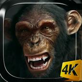 Talking Monkey Live Wallpaper icon