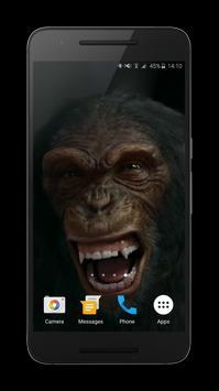 Talking Monkey Live Wallpaper apk screenshot