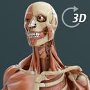 Visual Anatomy 3D   Human APK Android