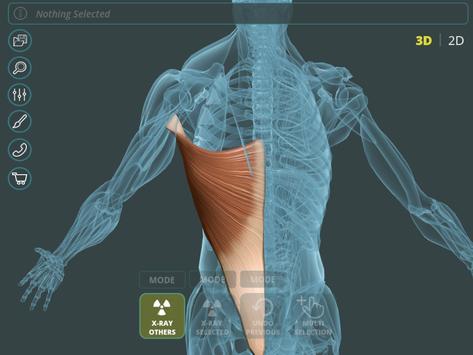 Visual Anatomy 3D | Human Descarga APK - Gratis Medicina Aplicación ...