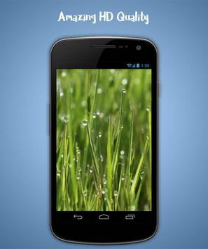 Grass Live Wallpaper screenshot 2