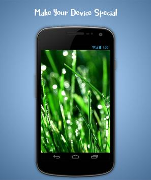 Grass Live Wallpaper screenshot 4