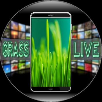 Grass Live Wallpaper screenshot 5