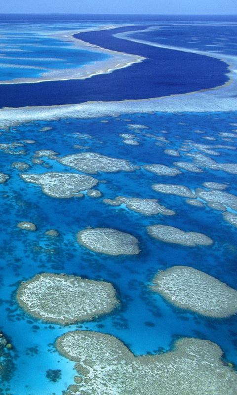 Great Barrier Reef Wallpaper For Android Apk Download