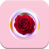 Rose Photo Frames Editor icon