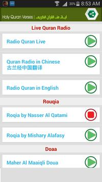 Quran Radio 截圖 1