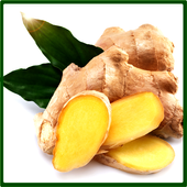 HEALTHY WITH THE BENEFITS OF GINGER icon