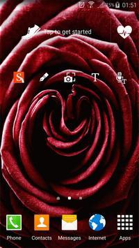 Valentine's Live Wallpapers apk screenshot