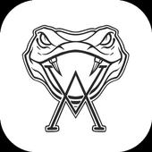 Venom Allstars icon