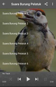 Suara Burung Pelatuk apk screenshot