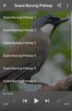 Suara Burung Poksay poster