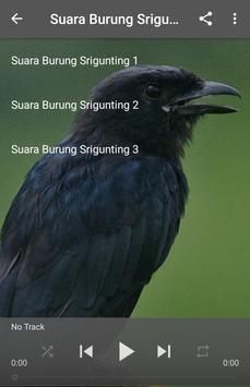 Suara Burung Srigunting apk screenshot