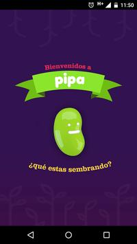 Pipa APP poster