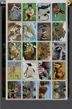 Real Madagascar apk screenshot