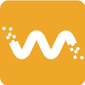 Megapixall EndCam icon
