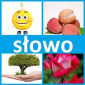 4 fotki 1 słowo icon