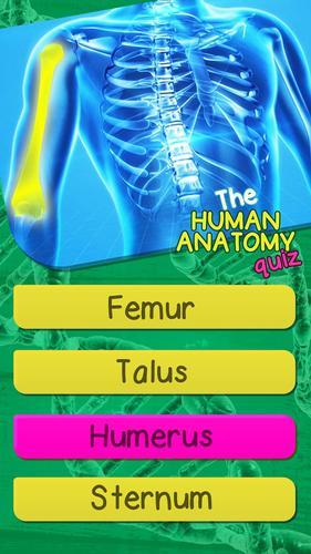 Quiz De Anatomia Del Cuerpo Humano Gratis for Android - APK Download