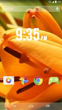 Tiger Lily Live Wallpaper poster
