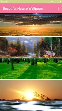 Beautiful Nature Wallpaper poster