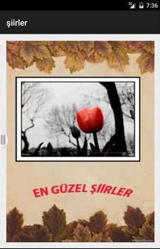 En Güzel Şiirler poster