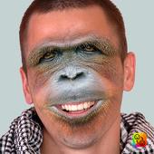 Face Swap icon