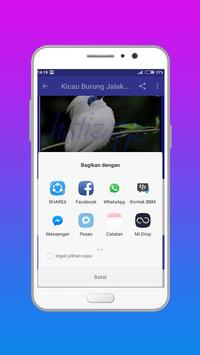 Kicau Burung Jalak Bali poster