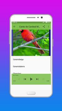 O CANTO DO CARDEAL DO NORTE apk screenshot