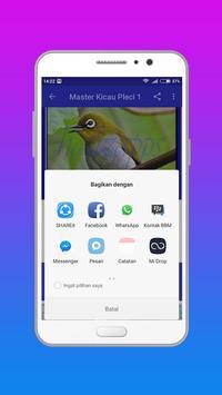 Kicau Burung Pleci apk screenshot