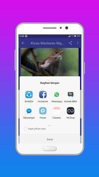 Master Kicau Burung Nightingale apk screenshot