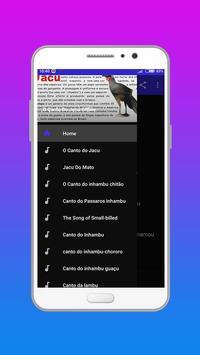 O Canto do Jacu poster
