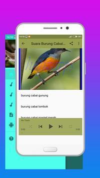 Master Kicau Burung Cabai apk screenshot