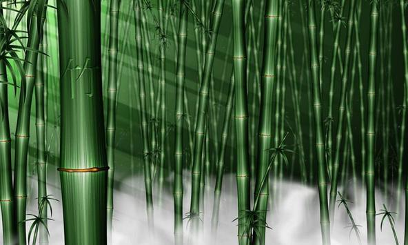 Bamboo wallpapers poster