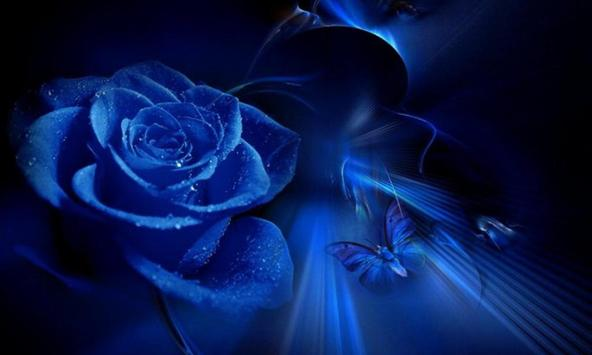 Blue roses wallpapers poster