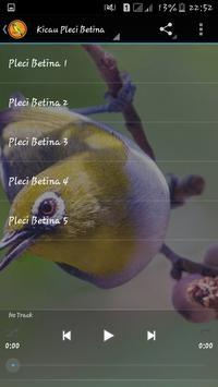 Kicau Pleci Betina Master apk screenshot